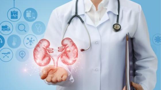Specialista urologo